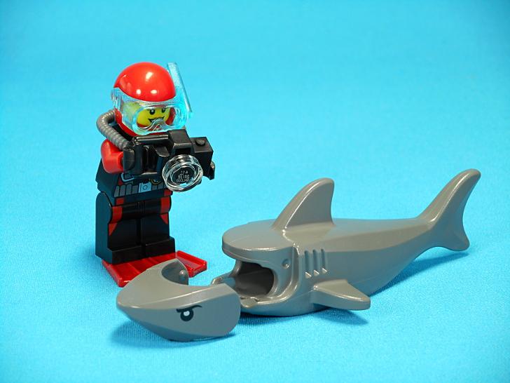 ダイバーとサメ